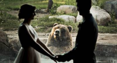 Бурый медведь «обвенчал» молодожёнов в зоопарке США