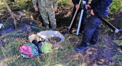 Схрон с оружием обнаружен на бывшем блокпосту на Украине