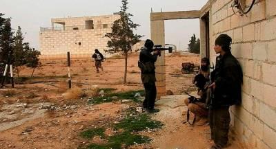 МИД рассказал о связях Нидерландов и боевиков в Сирии