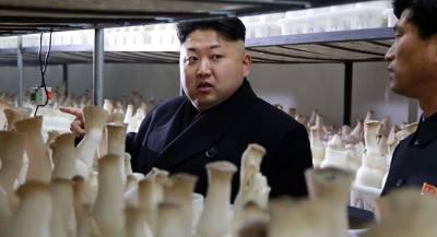 Ким Чен Ын подарил грибы главе Южной Кореи