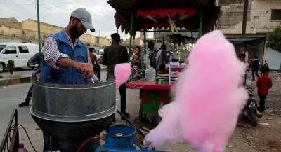 Дамаск удовлетворен ситуацией в Идлибе
