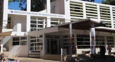 Российским туристам на Мадагаскаре грозит чума