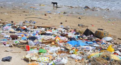 В Грузии запретили пластиковые пакеты