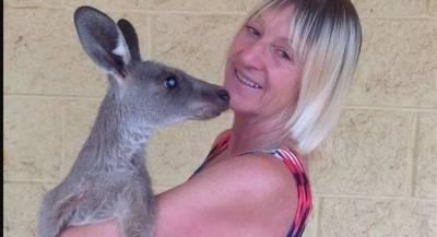 В Австралии кенгуру покалечил семью