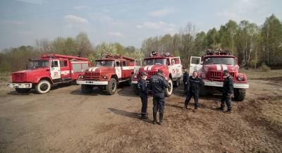 На Украине рассказали о ходе тушения пожара под Черниговом