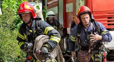 Россию обвинили в пожарах на территории Украины