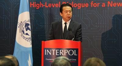 Дело об исчезновении экс-главы Интерпола закрыли во Франции