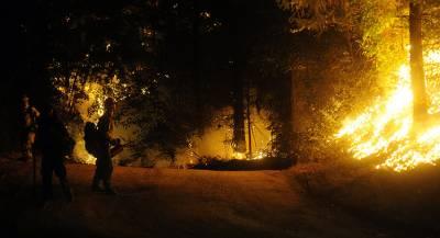 Жителей Калифорнии эвакуируют из-за природного пожара