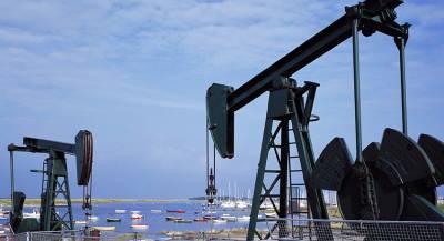 Новое месторождение Бахрейна обследует «Росгеология»
