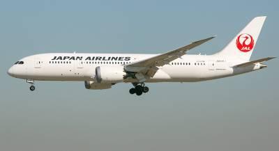 Обыски пройдут в авиакомпаниях Японии из-за пьяных пилотов