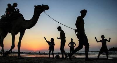 Египет стал мостом между Асадом и Персидским заливом