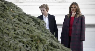 Трампу доставили шестиметровую рождественскую ель