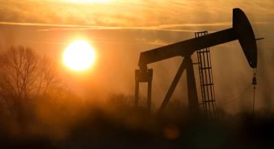 Саудовская Аравия допустила возможность роспуска ОПЕК