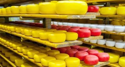 Лучший в мире сыр изготовили в Норвегии