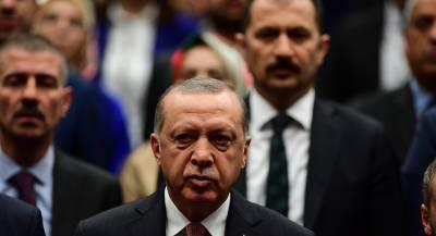 Эрдоган рассчитывает встретиться с Путиным и Трампом в Париже