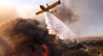 Жертв пожаров в Калифорнии стало больше