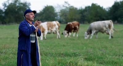Сербия начнёт поставлять в РФ сельхозпродукцию